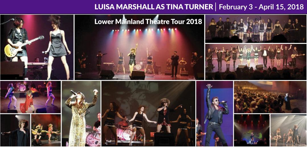 tina turner tour 2018